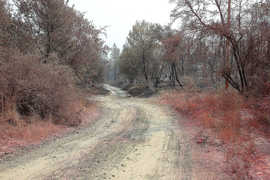 Fire retardant and charred hills line a road in the Newtown area of Nevada County, where the Jones Fire burned through this week.