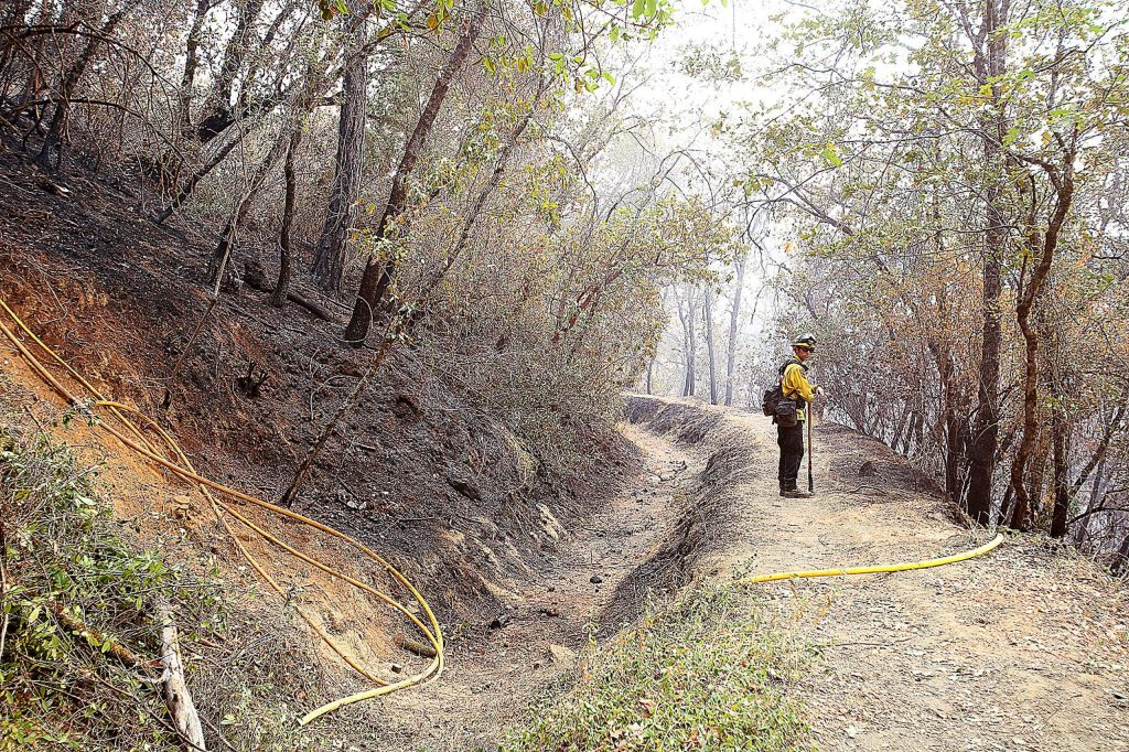 A Cal Fire firefighter keeps an eye on a portion of the Independence Trail Wednesday.