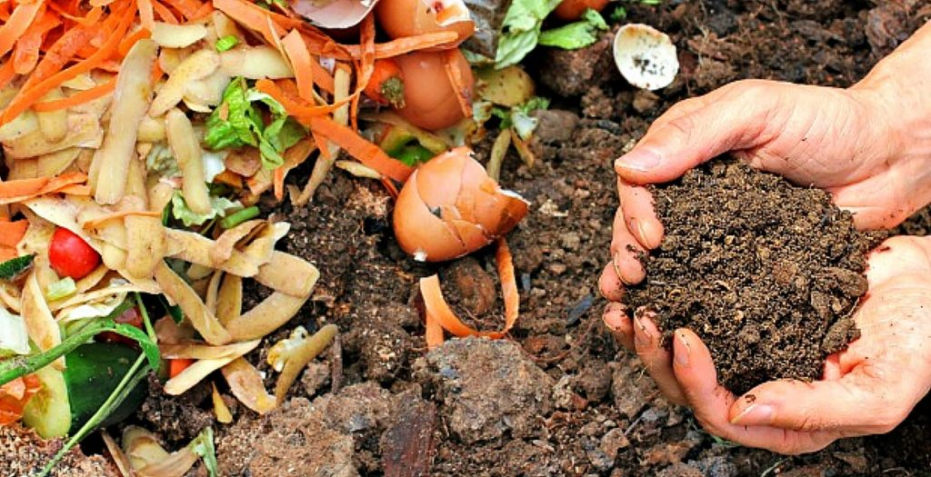 Composted material is rich in microorganisms and nutrients benefitting the soil in many ways. The addition of compost to the soil helps decrease the need for chemical fertilizers and it helps conserve water — compost can retain 100% of its weight in water and is an important consideration to protect our water resources.