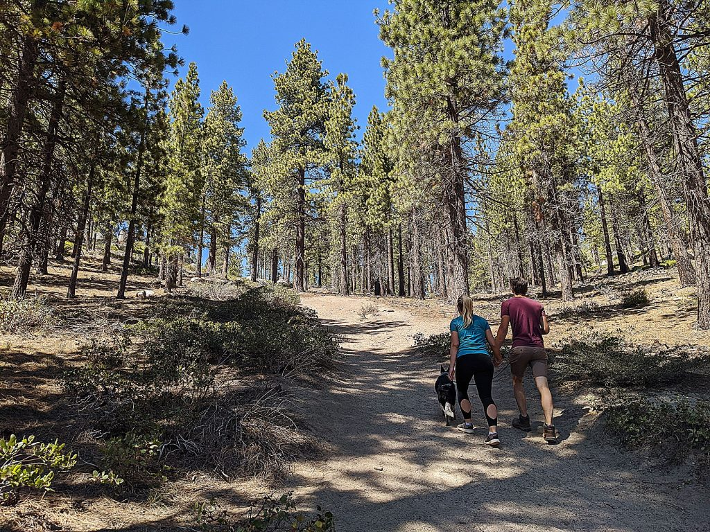 The steady climb is made easier by the ever-changing views of beautiful blue Lake Tahoe, the towering pines and bright granite boulders.