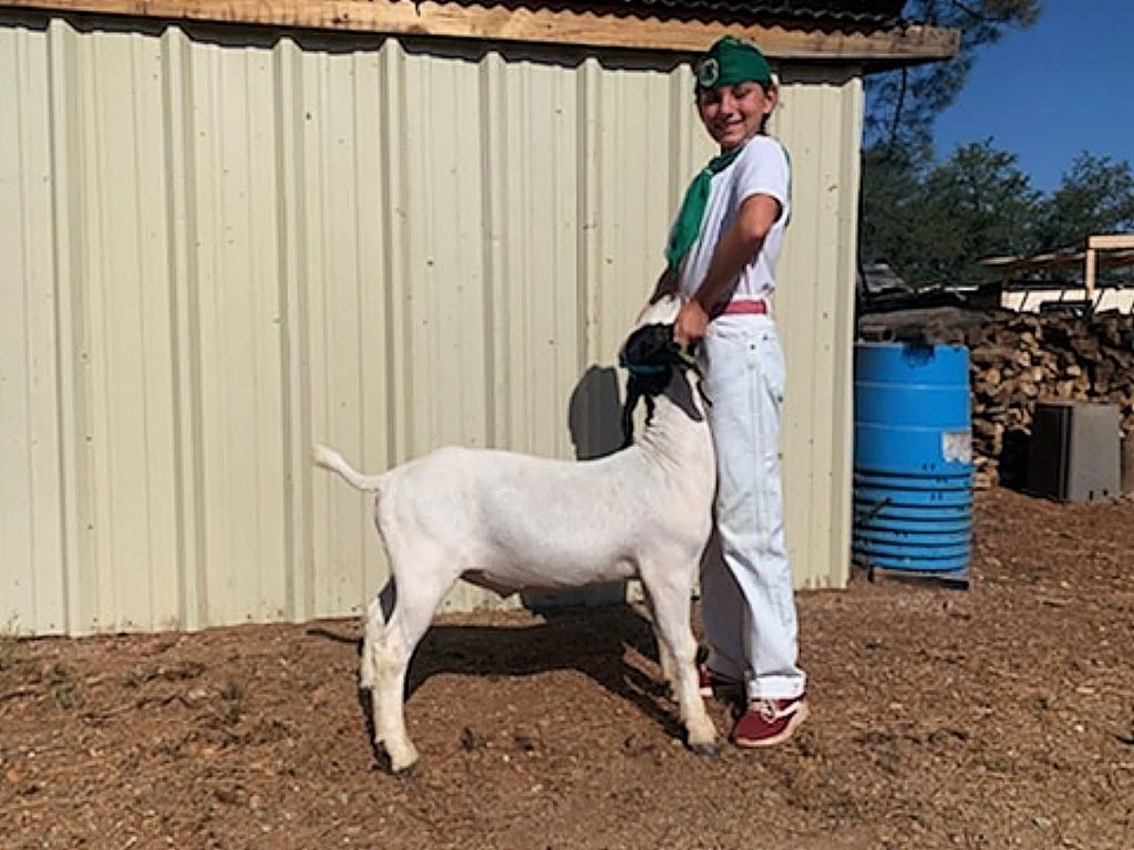 Eleven-year-old auction participant Hailey Heer, a member of Clear Creek 4-H, and her goat, Oreo.