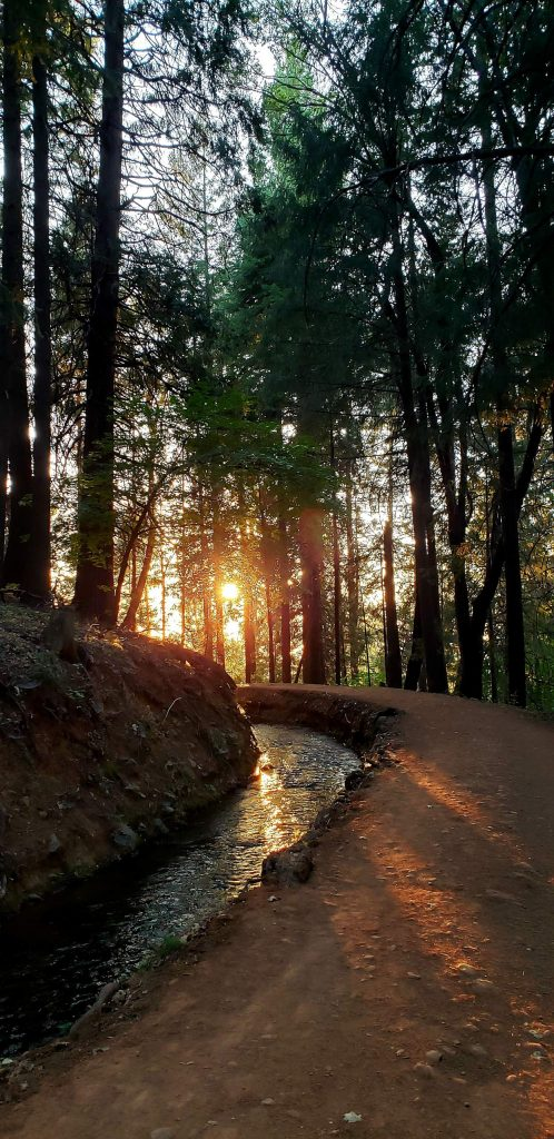 This is the sun setting over the Gracie Road NID trail.