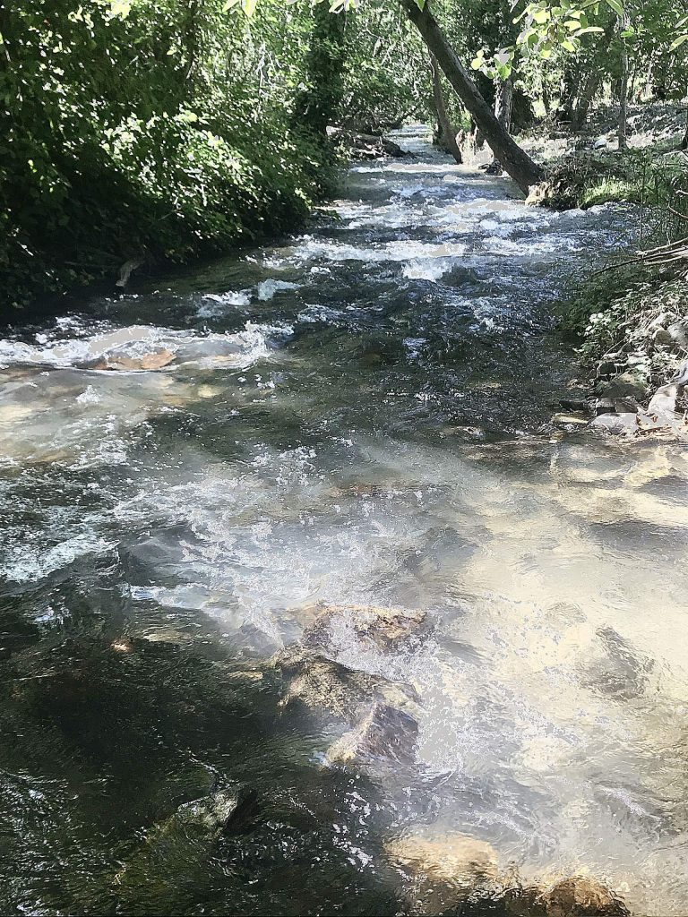 Wolf Creek always refreshing even in the hottest weather.