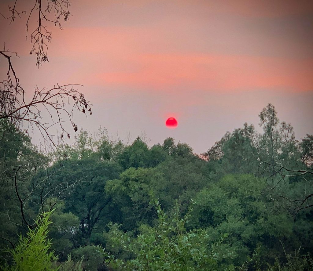 Sunset in Rough and Ready on August 19. It was a smoky day and the sun became a fire enging red color in the sky as it slowly sank into the dark purple haze.