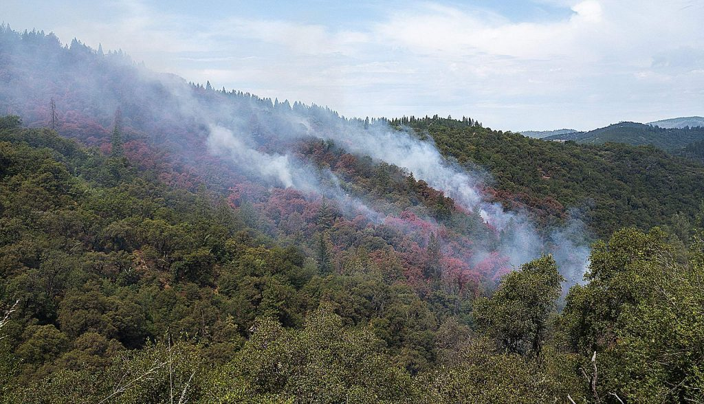 Air tankers drop retardant on trees as they fight the Jones Fire.