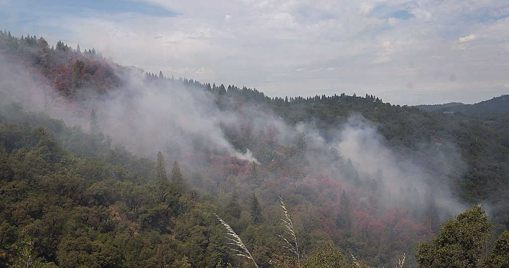 The Jones Fire had burned 55 acres as of Monday afternoon, Cal Fire said.