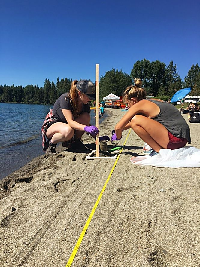 Researchers have collected beach sediment samples to better understand the issue of microplastics at Lake Tahoe.