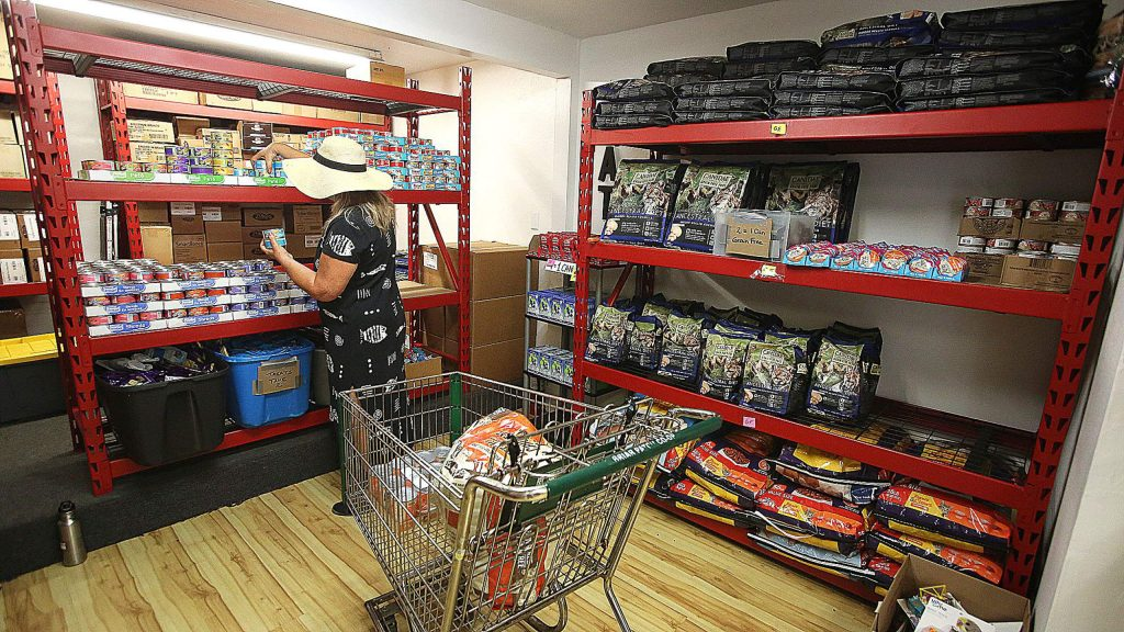 A shopper chooses items for her pets Wednesday at Nevada County Pets in Need's location inside of the former NEO building at 139 Joerschke Drive.