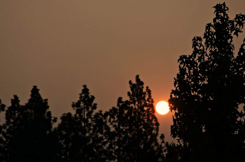 Sunrise behind the smoke and trees (Sept. 16).