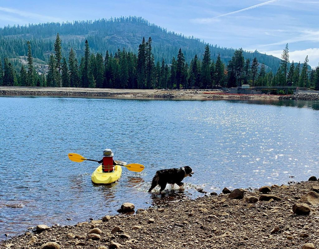 This little guy is only three years old and he's already paddling his first kayak along with his trusty puppy dog! Taken at Lake Valley Reservoir on Saturday, September 26.