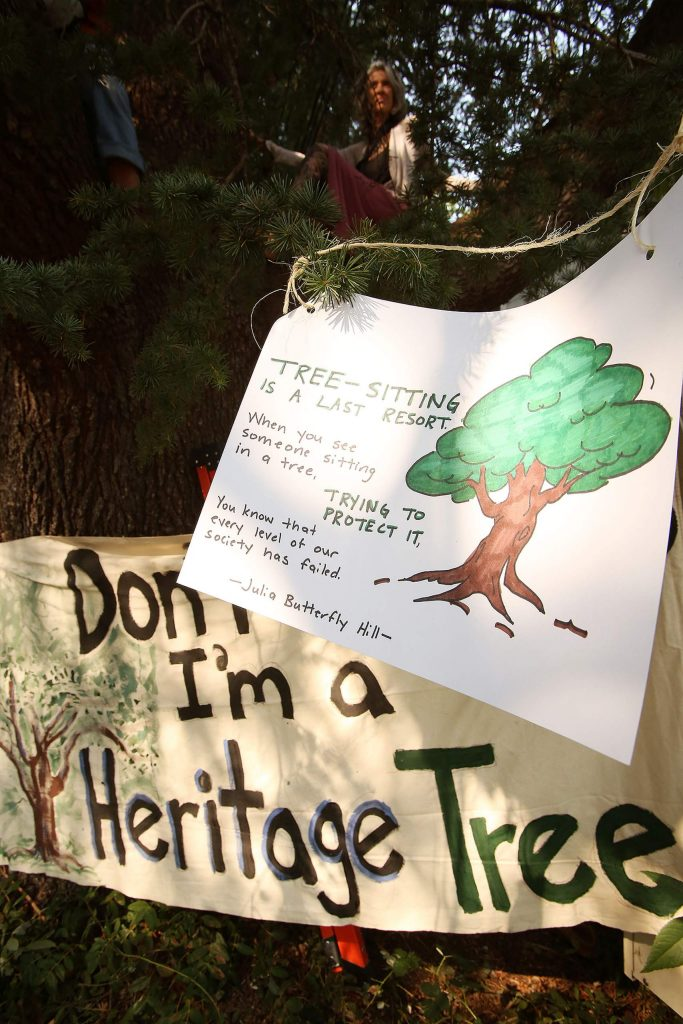 Passersby have shown their support in the Nevada City tree sitters and their efforts to preserve some of the city's historic trees.