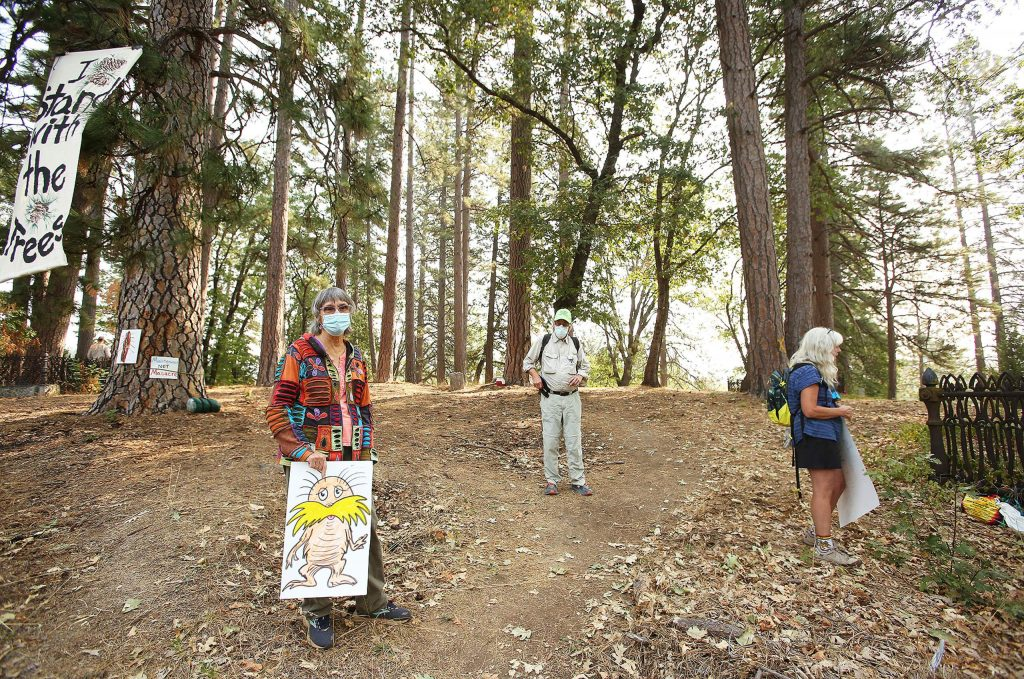 A group of tree protesters gather near a stand of Ponderosa Pines slated to be cut down by PG&E contractors in Nevada City's historic Pioneer Cemetery. PG&E is doing the work to help protect its utility right-of-ways during potentially dangerous wind events.
