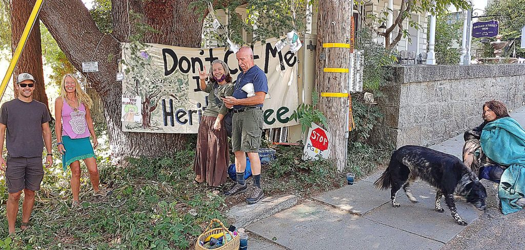 Tree supporters -- from left, Clayton Matheny, Kim Snyder, Caat Bain, Alan Krueger and Andre -- gather at a blue Atlas cedar on Broad Street Tuesday to celebrate the temporary halting of PG&E's plans to cut more than 260 trees in Nevada City.