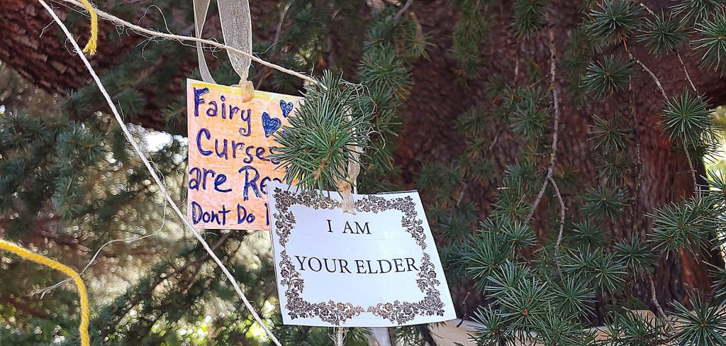 Supporters, including young children, left messages on the Broad Street blue Atlas cedar. A court ruling this week put a temporary stop to PG&E's plans to cut more than 260 trees in Nevada City.