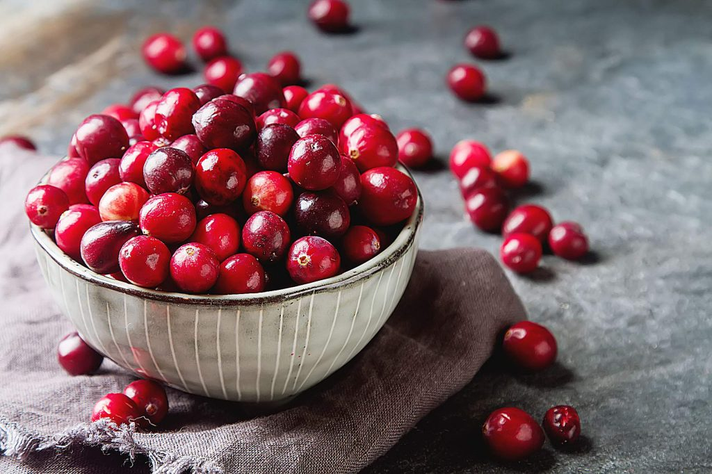 Red berries on a dark background. cranberries in a bowl