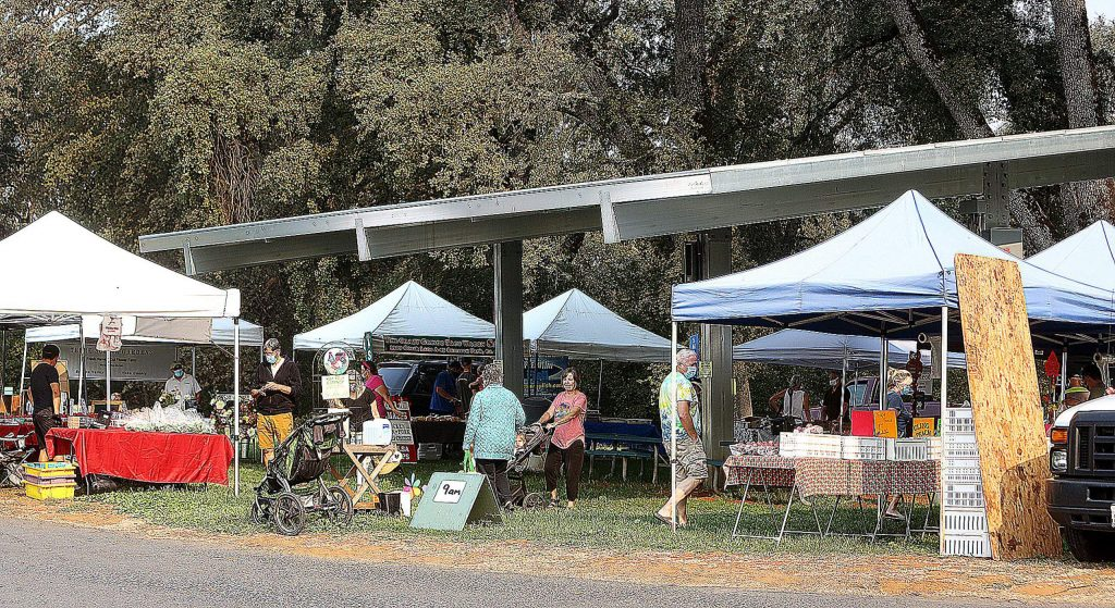 People peruse the different offerings of the Penn Valley Farmers' Market at Western Gateway Park. Market organizers and vendors hope to offer the local goods shopping event year-round on Thursday mornings.