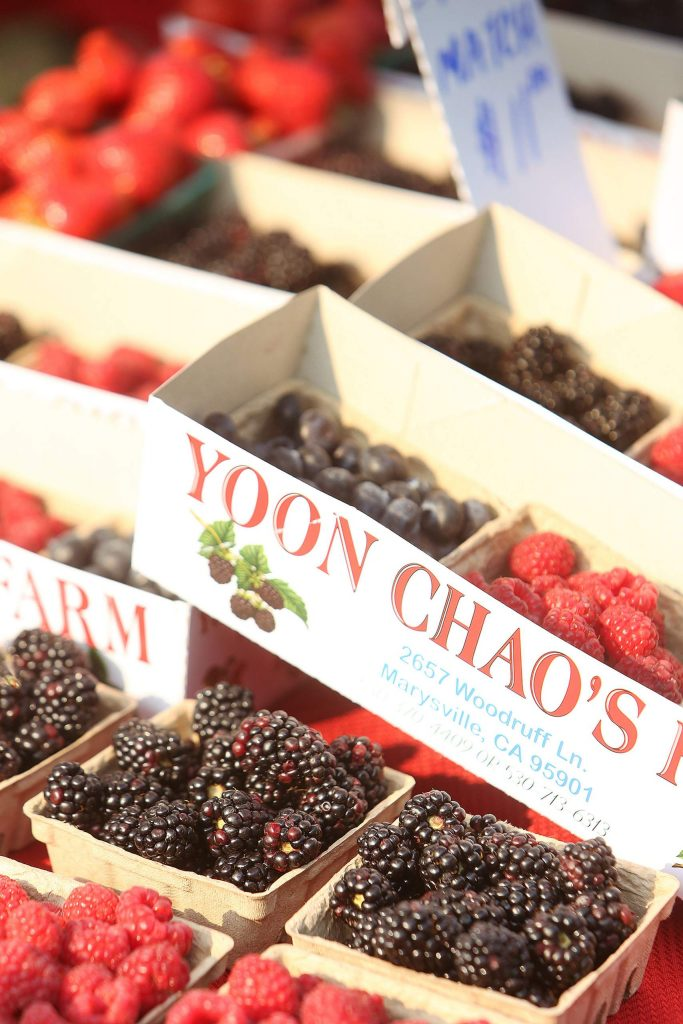 Bright, juicy and plump berries from Yoon Chao's Farm out of Marysville sit on display Thursday morning at the Western Gateway Park Farmers' Market.