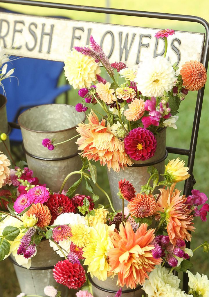 Flowers from Terre Soleil Gardens out of Browns Valley help brighten up the day as they sit on display during Thursday morning's Western Gateway Park Farmers' Market in Penn Valley.
