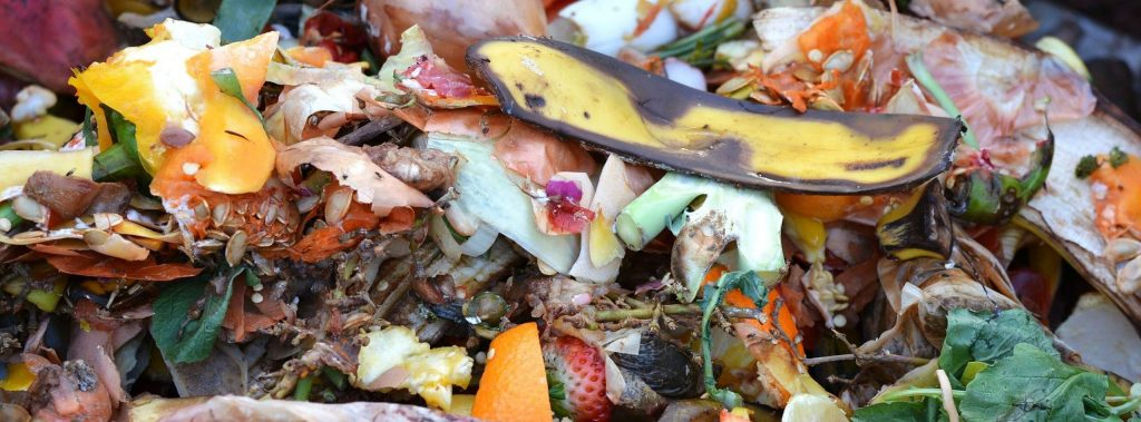 Composting lets microbes work to break down your food scraps and a lot of other organic matter you have around. You make sure they have their food (your scraps and other organic matter), the right amount of moisture, fresh air, and that it's not too hot or too cold.