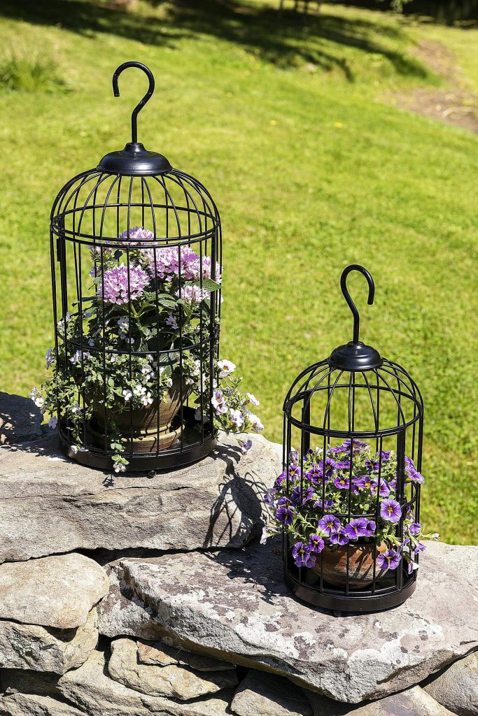 Bird cage planters add whimsy to outdoor or indoor décor while providing a unique place to display air plants, seasonal plants and more.