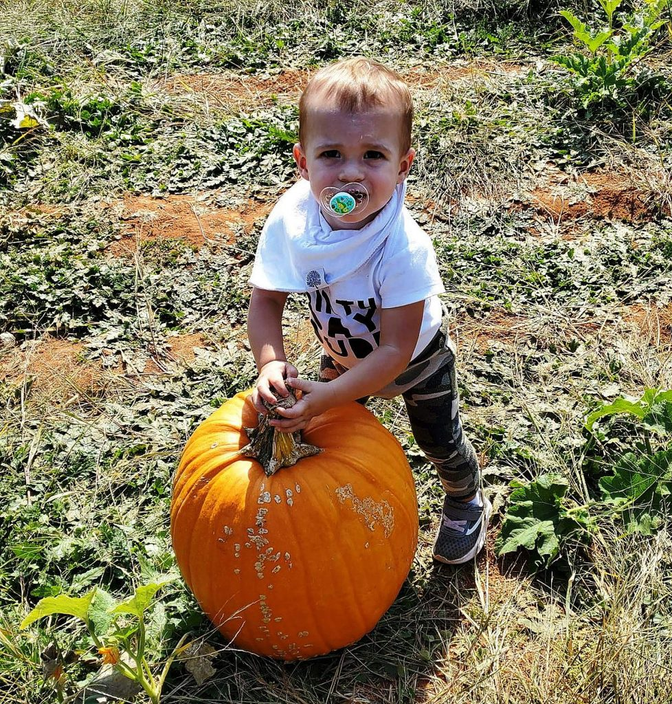 One-year-old Atlas Meyers visited Bierwagen's Donner Trail Fruit and Farm with his family and found a pumpkin nearly as big as he is.
