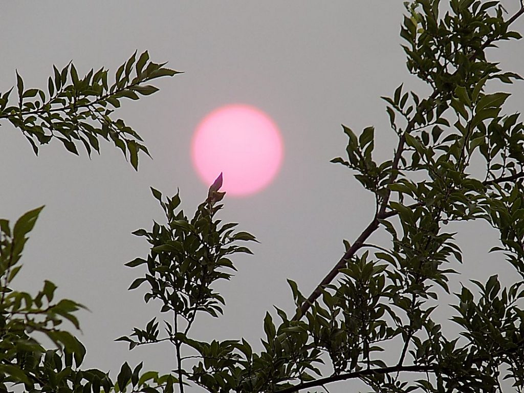 A rosy sun sinks over Lake of the Pines (Oct. 6).