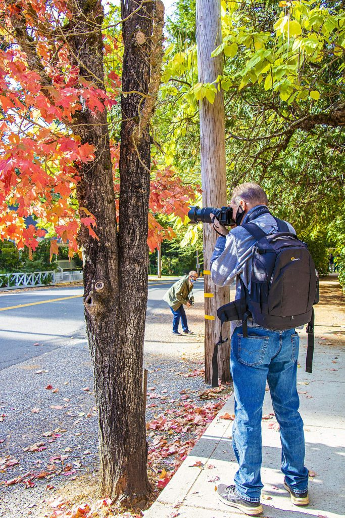 Photo walks have returned (masks and distancing added) with Northern California Scenics (Kial James). Extra fun gathering with other photo folks enjoying the perfect fall day!
