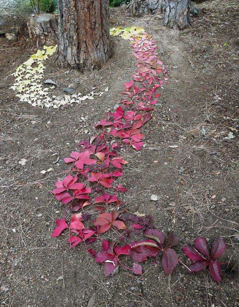 A tribute to Andy Goldsworthy.