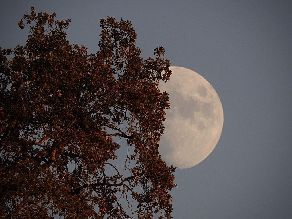 Almost blue moon in October.