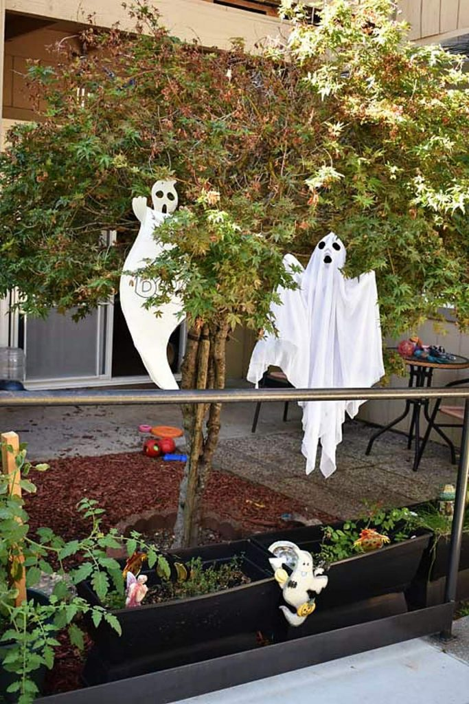 A big BOO from Grass Valley Senior Apartments.