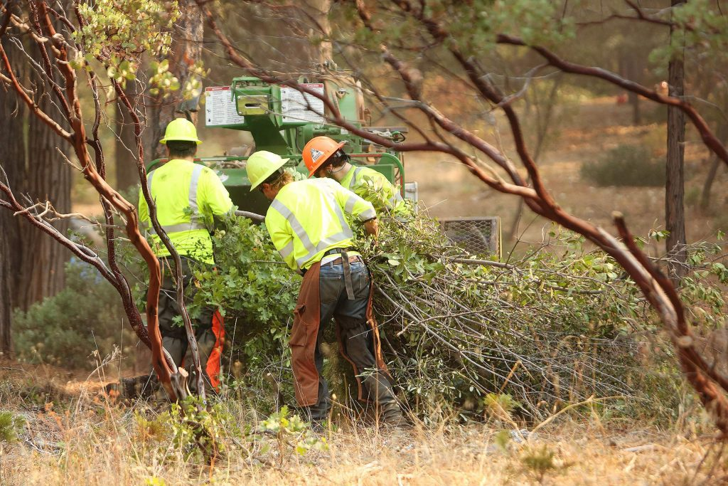 A brush clearing crew places a load of branches into the masticator Thursday.