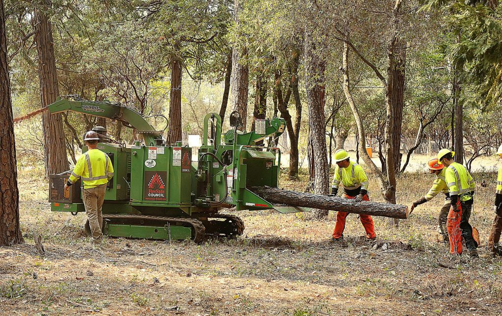Members of a Nevada County Fire Safe Council brush clearing crew work the property of Curtis and Marta Price Thursday off Squirrel Creek Road as part of the Ponderosa West Grass Valley shaded fuel break.