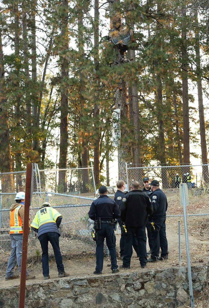 Nevada City police and PG&E workers gather outside of Nevada City's Pioneer Cemetery, where three people were arrested and a fence was erected Friday morning in an attempt keep protesters from trying to stop some of the city's trees from being cut.