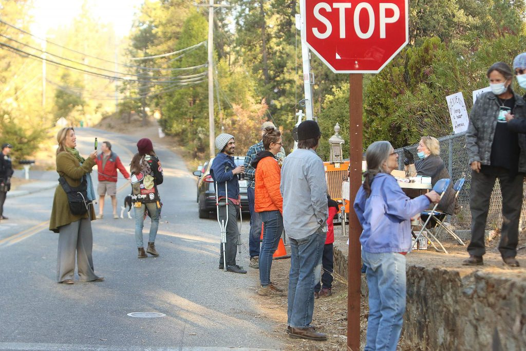 A few dozen people went to Pioneer Cemetery to show support for the tree protesters.