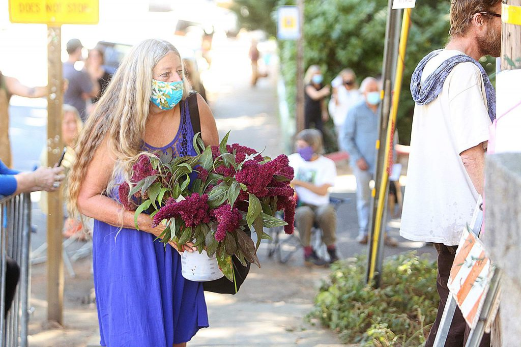 """Flowers are brought to """"Bella,"""" the blue Atlas cedar, that will soon come down in Nevada City."""