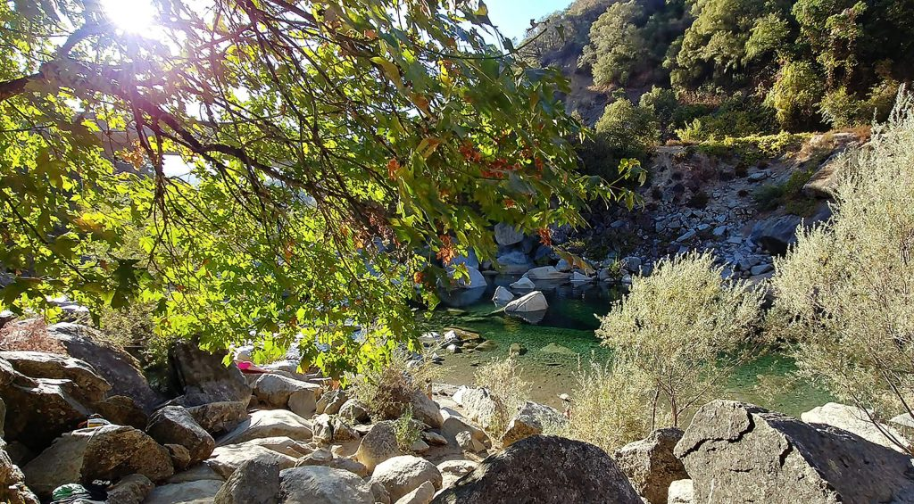The sun shines through the changing leaves along the South Yuba River Tuesday.