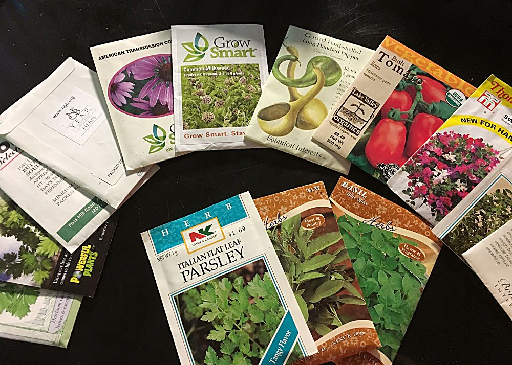 Leave leftover seeds in their original packet whenever possible and store in an airtight container for next season.