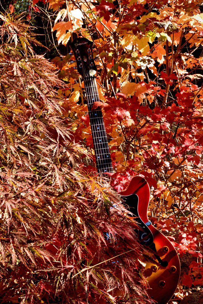 The autumn leaves compliment my guitar.