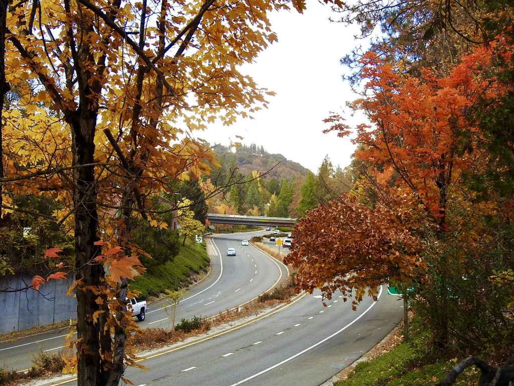 Nevada City has long distinguished itself for its fall colors, partially due to the Cornish miners of the 1800s, who planted deciduous trees that reminded them of their homeland in England.