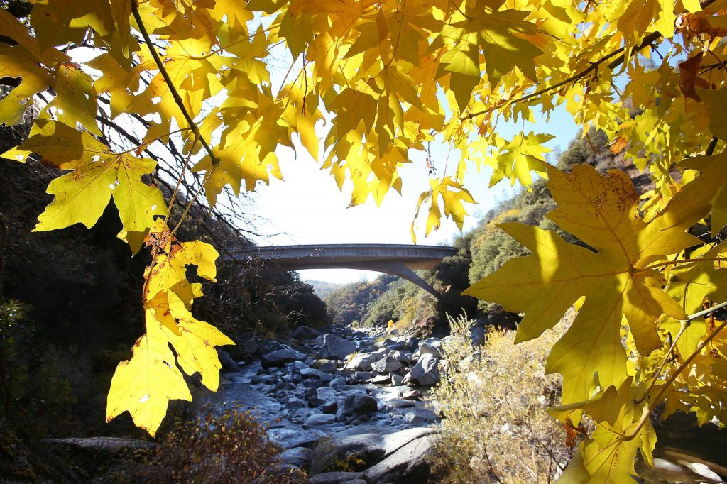 Fall foliage frames the South Yuba River as it flows under the Highway 49 bridge in Nevada County. Sunny skies will remain this week with high temperatures in the low to mid-50s and overnight lows in the lower 40s. Temperatures will gradually rise to a forecasted high temperature of 61 degrees Sunday.